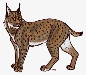 Clipart lynxes banner royalty free stock Lynx PNG, Transparent Lynx PNG Image Free Download - PNGkey banner royalty free stock