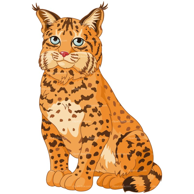Clipart lynxes vector library library Free Lynx Cliparts, Download Free Clip Art, Free Clip Art on Clipart ... vector library library
