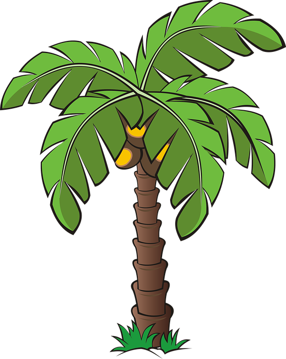 Clipart magnolia tree clipart library Free photo Tree Palm Trees Forest Vegetation Dates Date Palm - Max Pixel clipart library