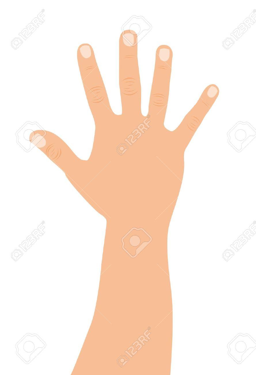 Caucasian open hand over. Clipart main ouverte