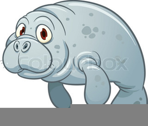 Manitee clipart clip transparent Animated Manatee Clipart | Free Images at Clker.com - vector clip ... clip transparent