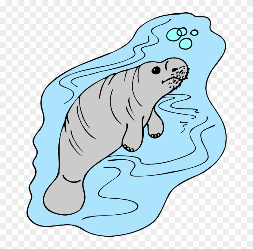 Manitee clipart vector royalty free Manatee Clipart Cliparts And Others Art Inspiration - Manatee, HD ... vector royalty free