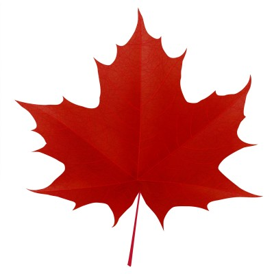 Canada clipart leaf picture freeuse stock Free Canadian Maple Leaf, Download Free Clip Art, Free Clip Art on ... picture freeuse stock
