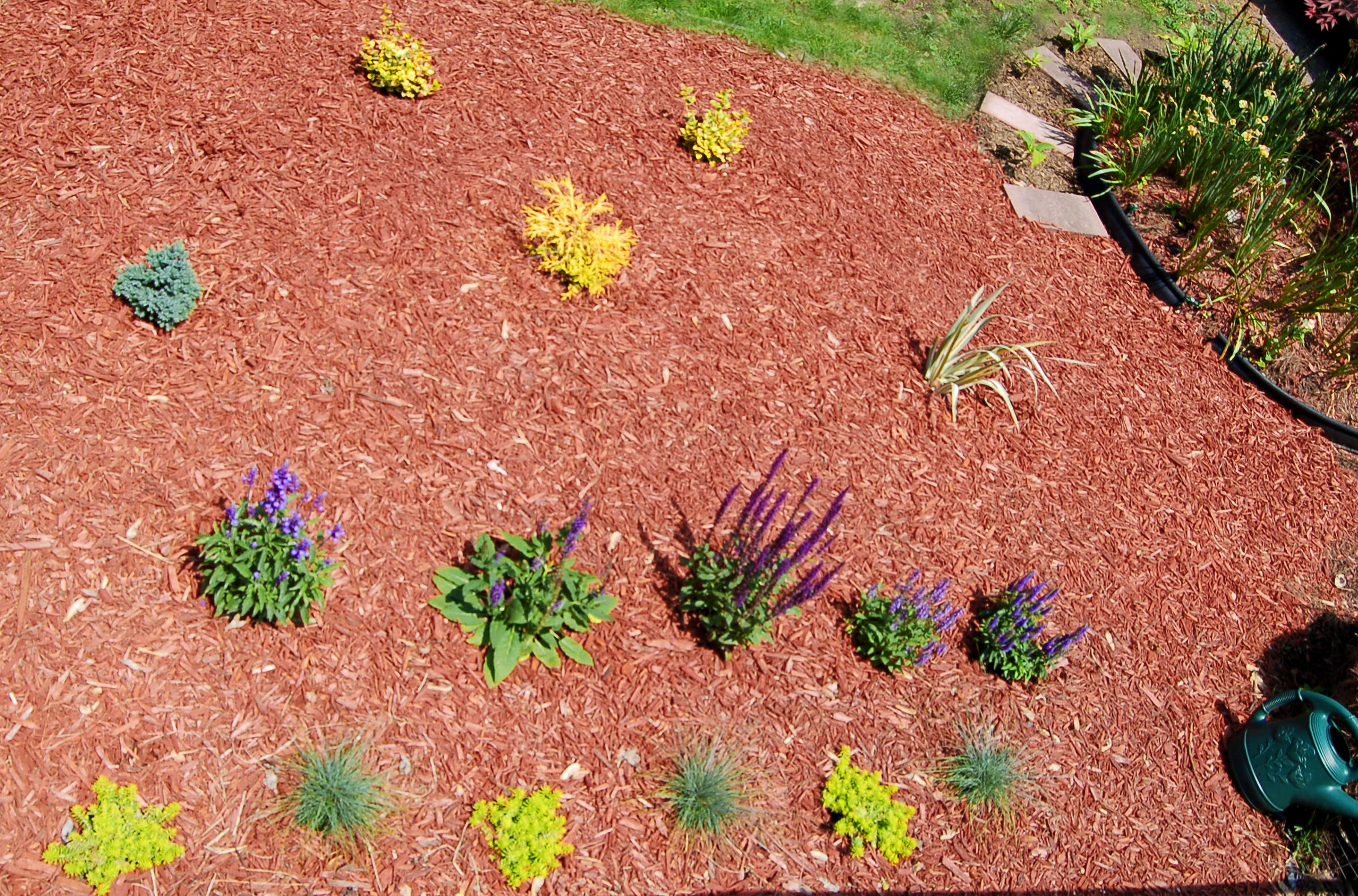Clipart marajuana in an outdoor garden setting with hills graphic royalty free stock Creating a Planting Bed, and Choosing and Arranging the Flowers graphic royalty free stock