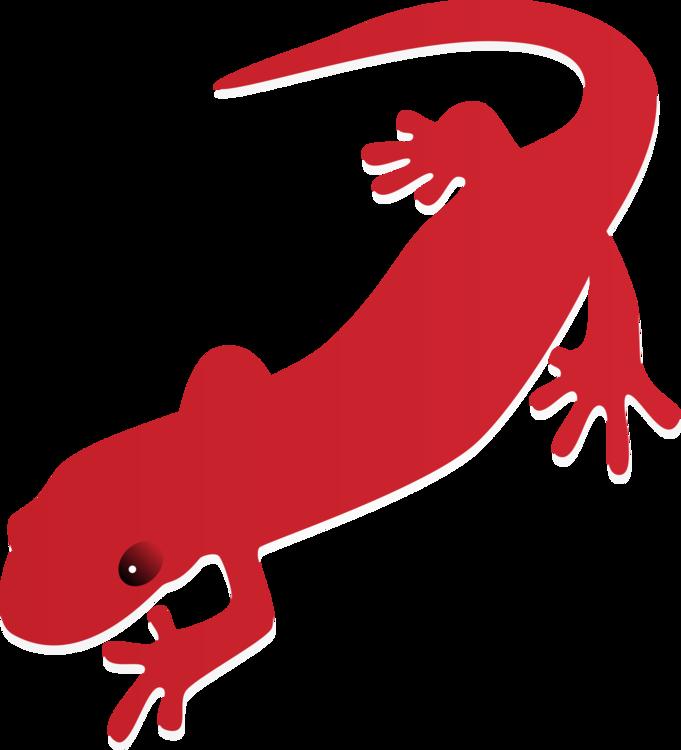 Clipart money on fire clip art free library Fire salamander Newt Drawing Tiger salamander free commercial ... clip art free library