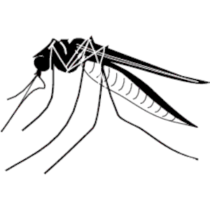 Mosquito images clipart svg transparent library Free Mosquito Cliparts, Download Free Clip Art, Free Clip Art on ... svg transparent library