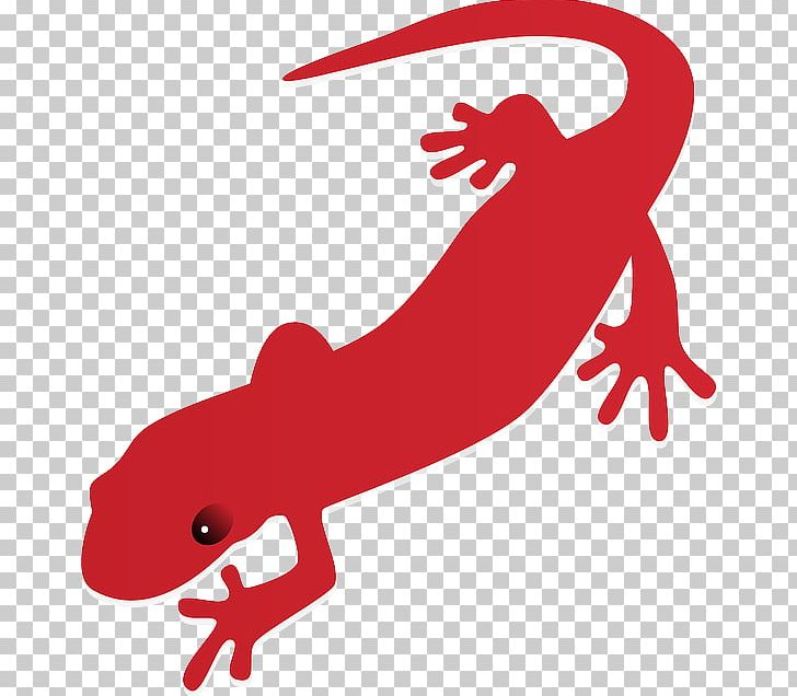 Clipart newt png transparent stock Salamander Newt PNG, Clipart, Amphibian, Animal Figure, Animals, Art ... png transparent stock