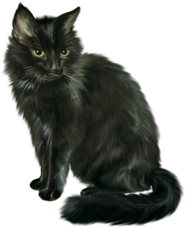 Clipart norwegian forest cat jpg library library Cat Clip art - Black Cat Halloween Horror 651*800 transprent Png ... jpg library library