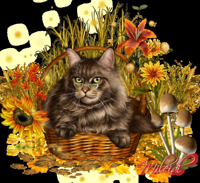 137614690_5937561_MAKlRqyvW3Lu.png (700×641) | Kot Clipart / Cat ... vector free library