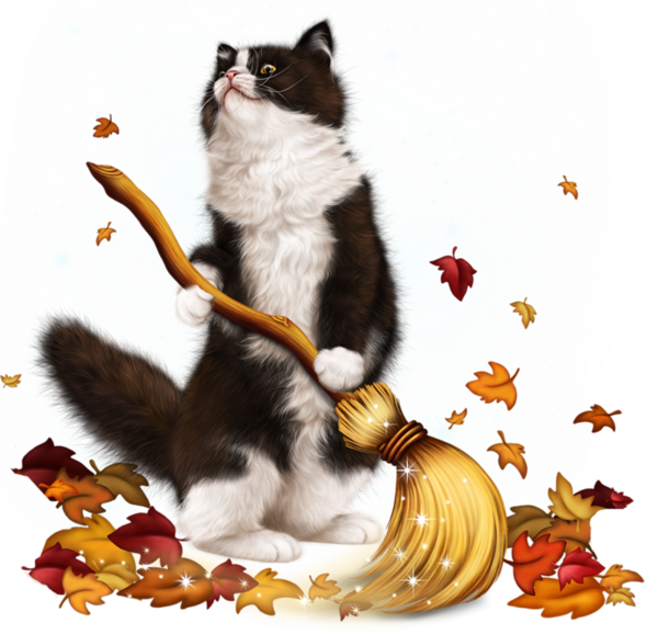 Clipart norwegian forest cat banner black and white library chatons,chats,cat,gato,Katze,katter,kettir,cait, | Cat | Pinterest ... banner black and white library