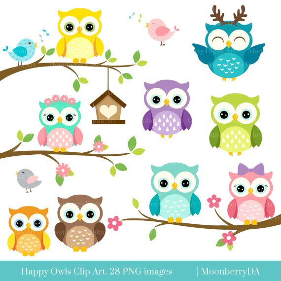 Clipart number 1 owl.  best ideas about