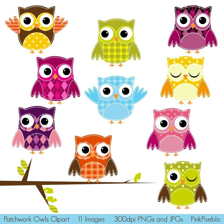 Clipart number 1 owl jpg royalty free library 17 Best images about Cute little OWLS =) on Pinterest | Baby owls ... jpg royalty free library