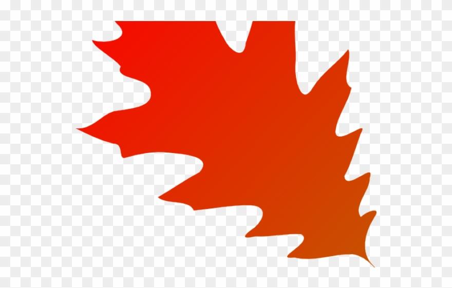 Clipart oak leaf transparent orange svg royalty free Autumn Leaves Clipart Transparent Background - Red Oak Leaf Clipart ... svg royalty free