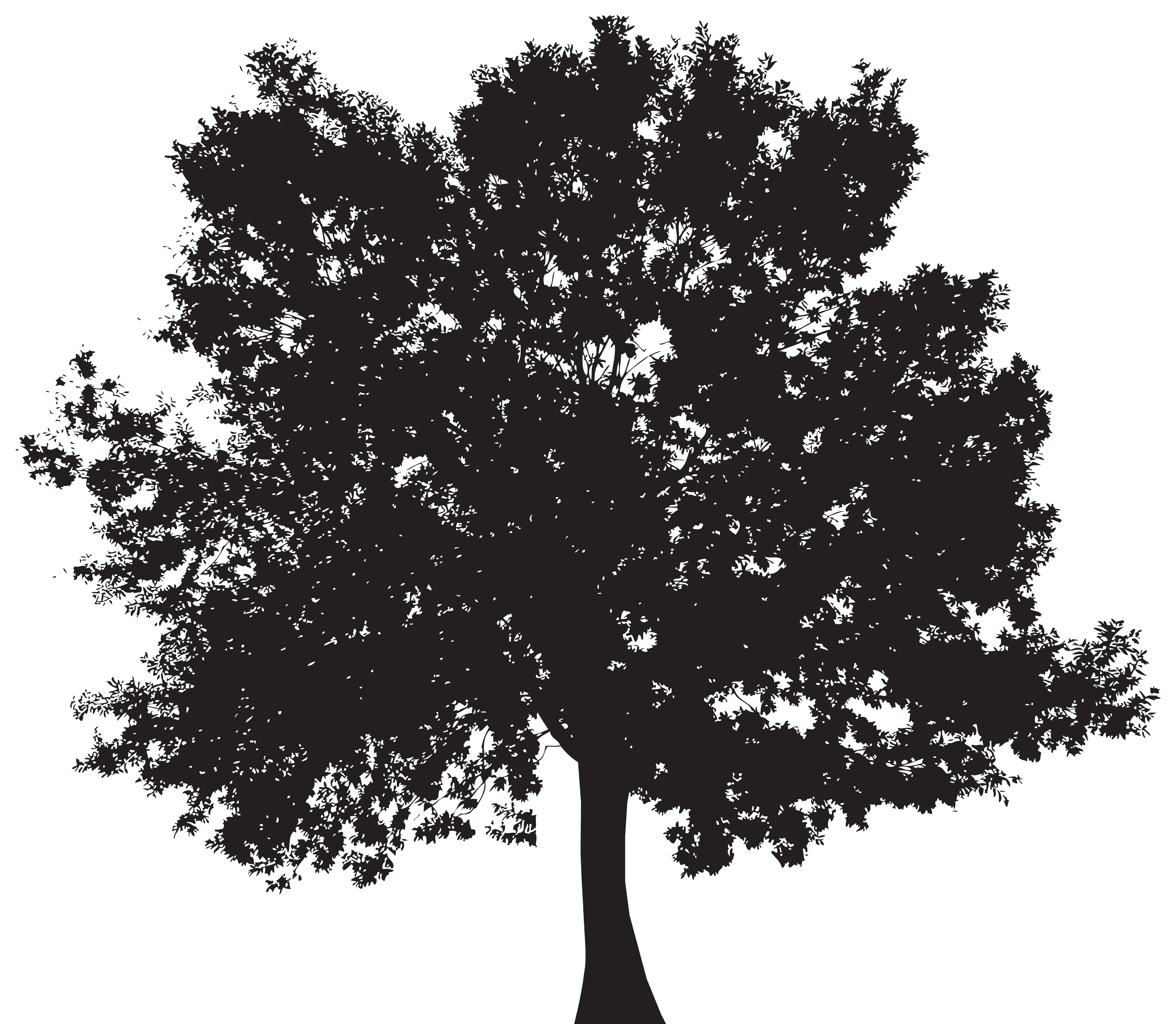 Silhouette tree clipart picture free stock Tree Silhouette PNG Clip Art | Gallery Yopriceville - High-Quality ... picture free stock