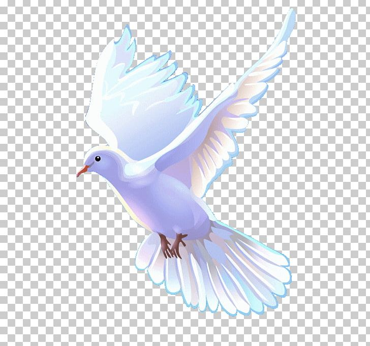 Clipart of a church with happy birds image freeuse download Bible Christian Church Christianity Apostolic Church PNG, Clipart ... image freeuse download