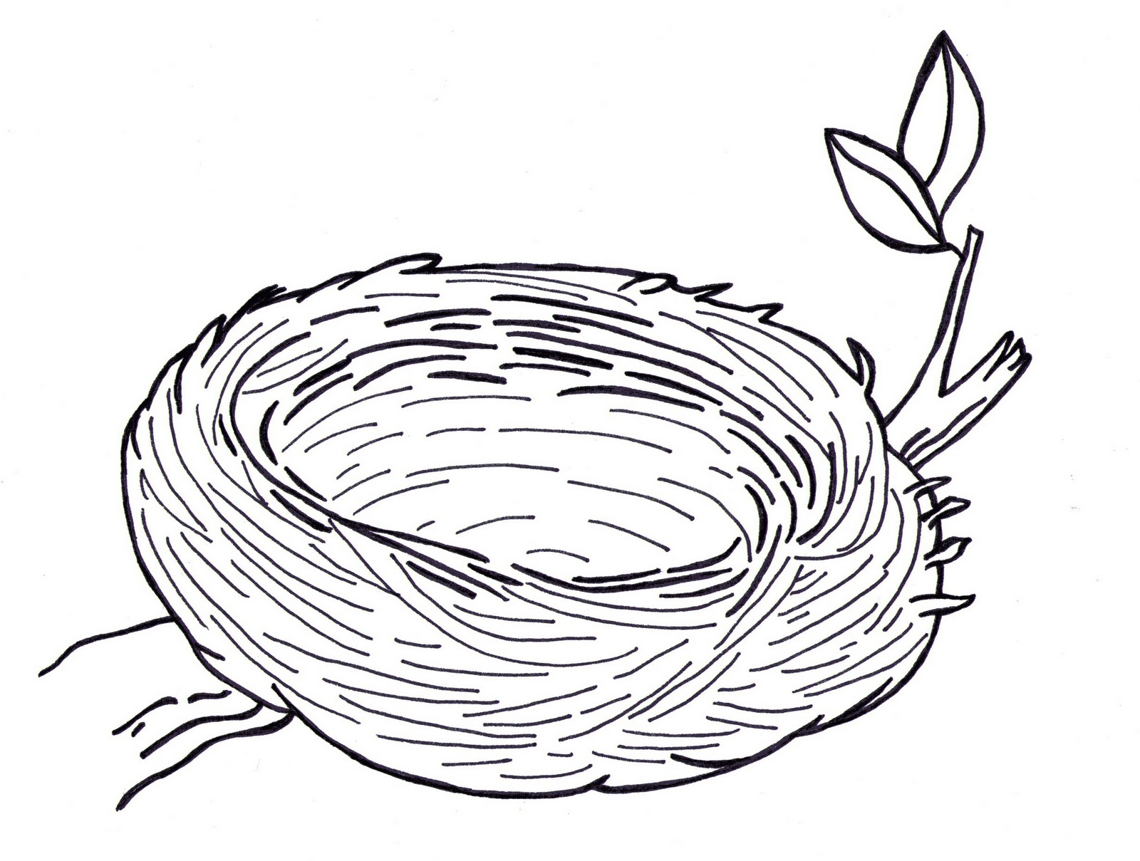 Clipart of a nest picture free library Free Nest Outline Cliparts, Download Free Clip Art, Free Clip Art on ... picture free library