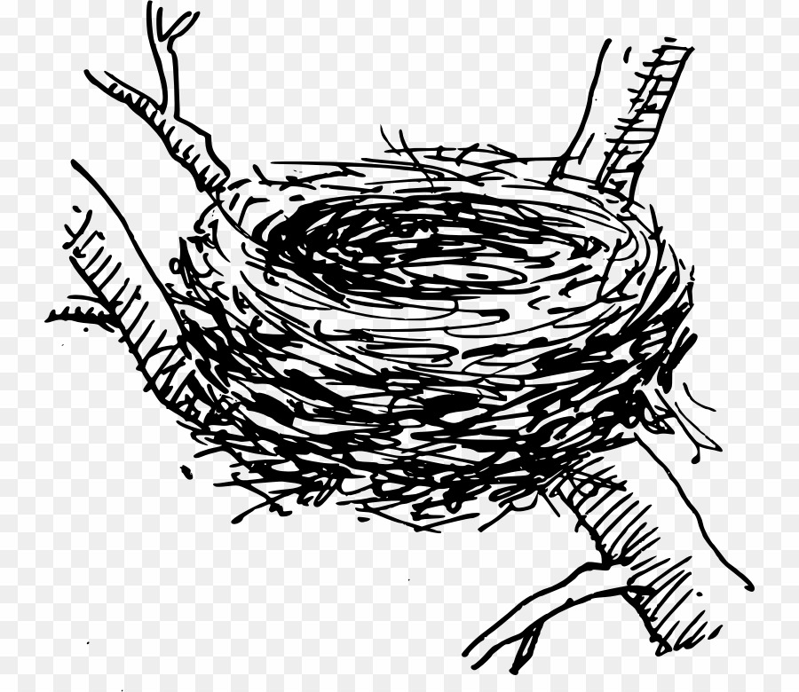 Clipart of a nest black and white png black and white download Nest Black And White PNG Bird Nest Clipart download - 800 * 780 ... png black and white download