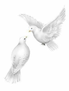 Clipart of a set of doves with dew
