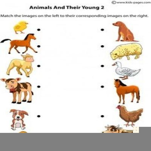 Clipart of animals and their young graphic library Clipart Images Of Animals And Their Young Ones | Free Images at ... graphic library