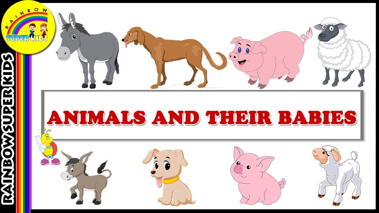 Clipart of animals and their young picture transparent Animals and their Young Ones - Animals & their Babies - Best Learning Videos picture transparent