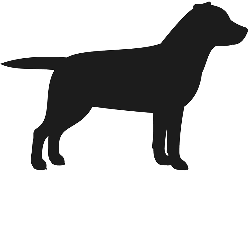 Clipart of black lab dog jpg library stock Silhouette Labrador at GetDrawings.com | Free for personal use ... jpg library stock