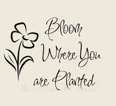 Clipart of bloom where you are planted vector black and white download Pin by Meredith Boydston on Ink Ideas | Bloom quotes, Bloom where ... vector black and white download