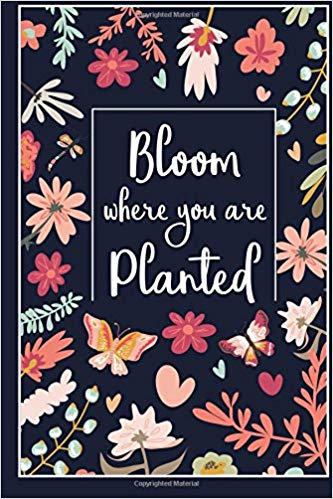 Clipart of bloom where you are planted clipart freeuse download Bloom Where You Are Planted: Inspirational Quote Journal for Women ... clipart freeuse download