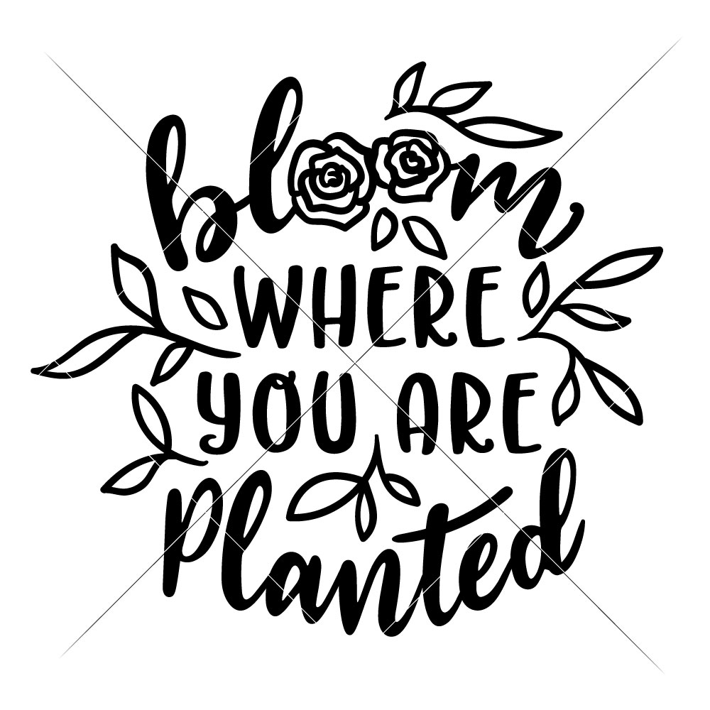 Clipart of bloom where you are planted banner freeuse library Bloom where you are planted banner freeuse library