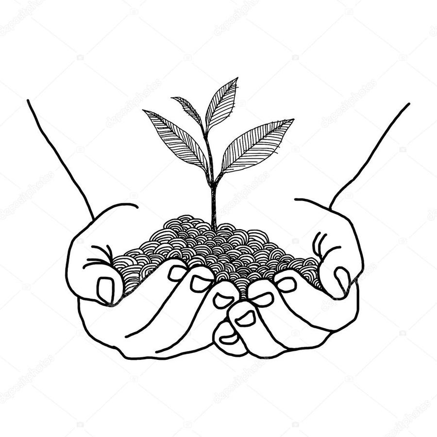 Clipart of both black hands holding a plants png royalty free library Download hand holding a plant drawing clipart Drawing | Drawing ... png royalty free library