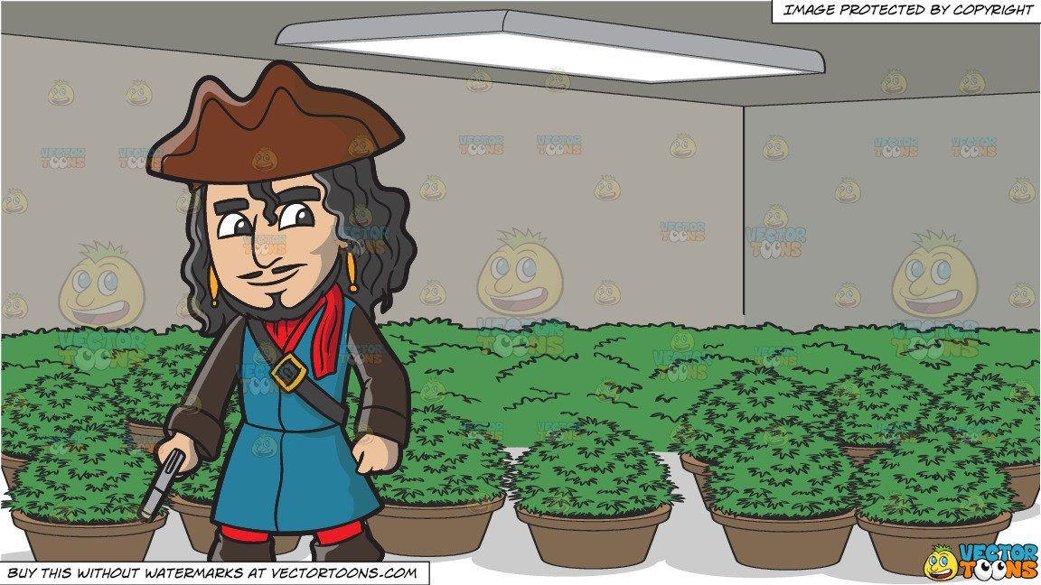 Clipart of both black hands holding a plants png stock A Pirate With Black Hair Holding A Pistol In His Hand and A Grow Room Full  Of Potted Plants png stock
