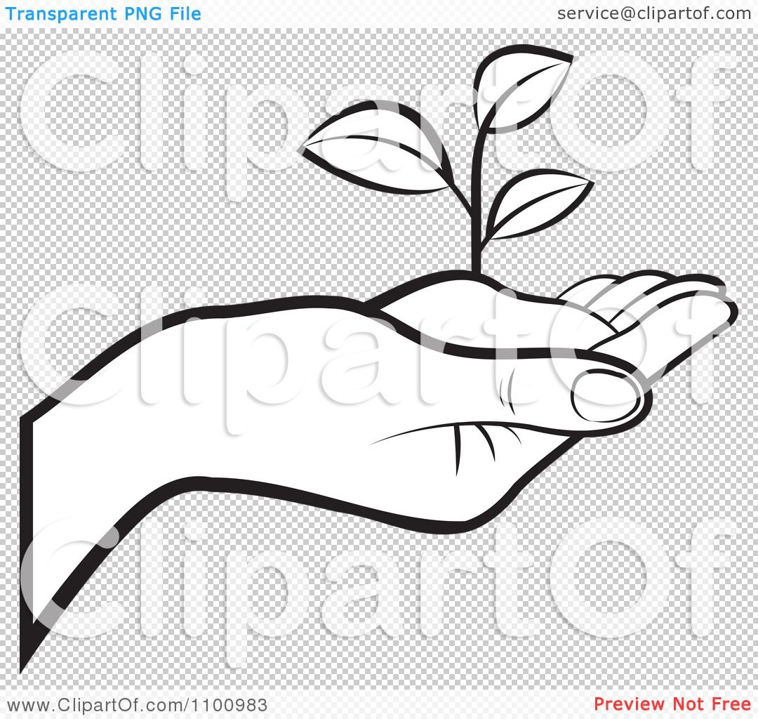Clipart of both black hands holding a plants picture black and white stock Clipart Outlined Human Hand Holding A Plant In Soil - Royalty Free ... picture black and white stock