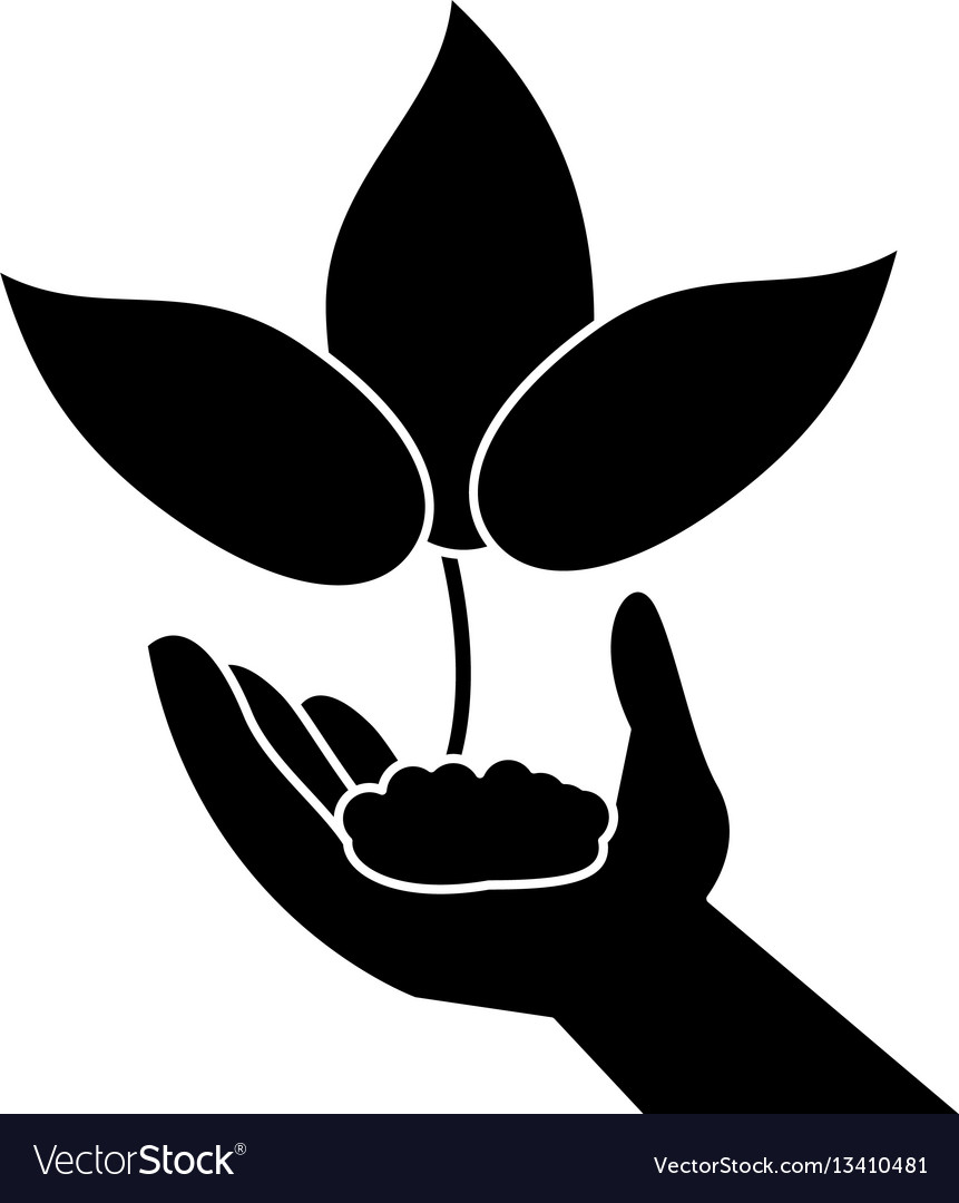 Clipart of both black hands holding a plants picture black and white library Hand holding plant leaves pictogram picture black and white library