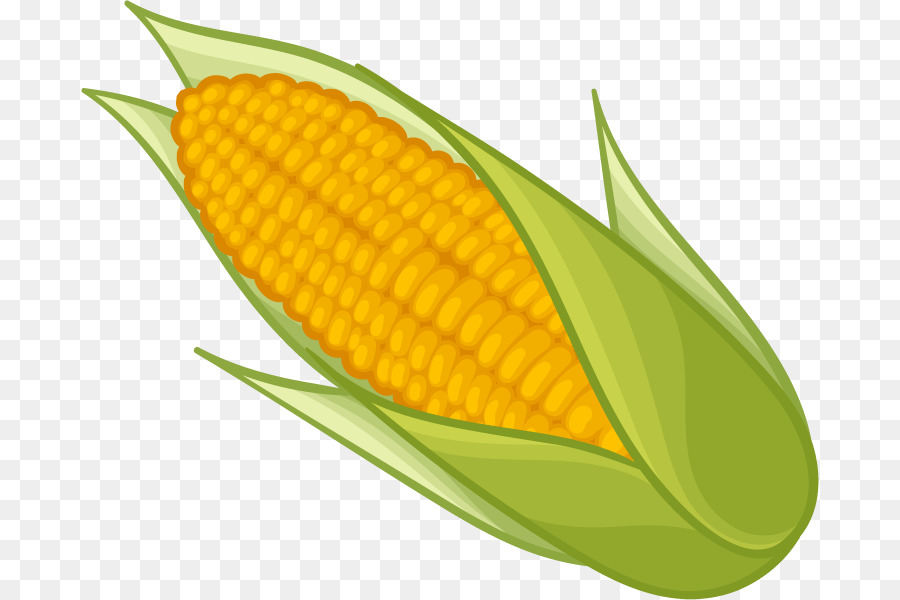 Clipart of corn on the cob banner stock Popcorn Cartoon png download - 738*600 - Free Transparent Corn On ... banner stock