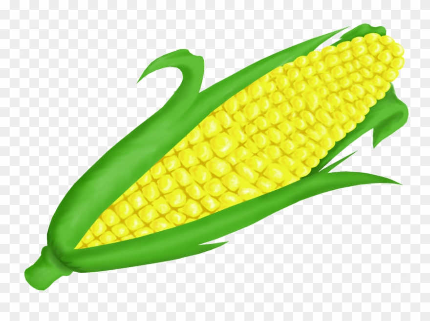 Clipart of corn on the cob png royalty free stock Fall Corn Cliparts - Corn On The Cob Clipart - Png Download (#40976 ... png royalty free stock