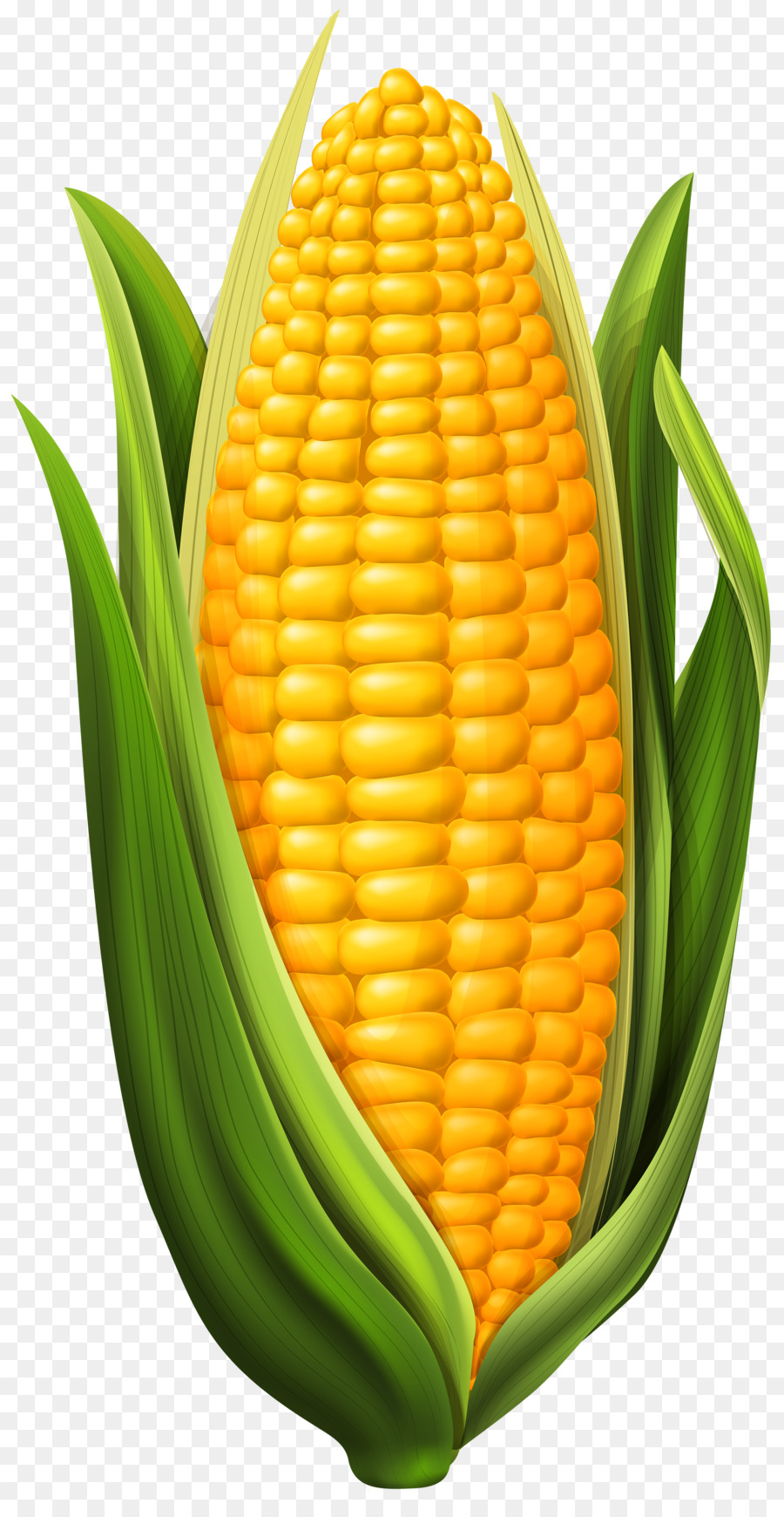Clipart of corn on the cob graphic library stock Candy Corn clipart - Food, transparent clip art graphic library stock