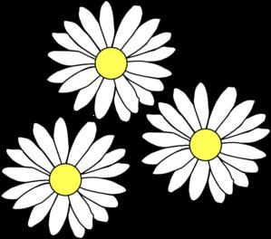Daisies clipart