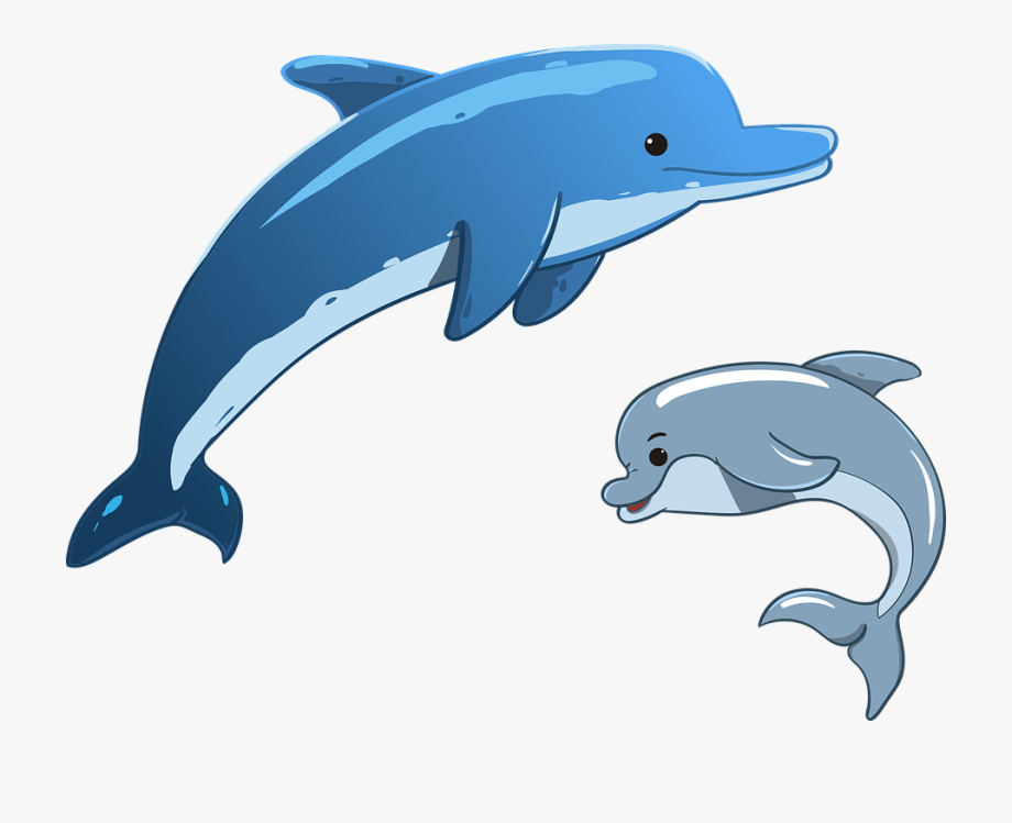 Clipart of dolphins svg royalty free library Dolphins Clipart - Cartoon Dolphin Jumping Png #102894 - Free ... svg royalty free library