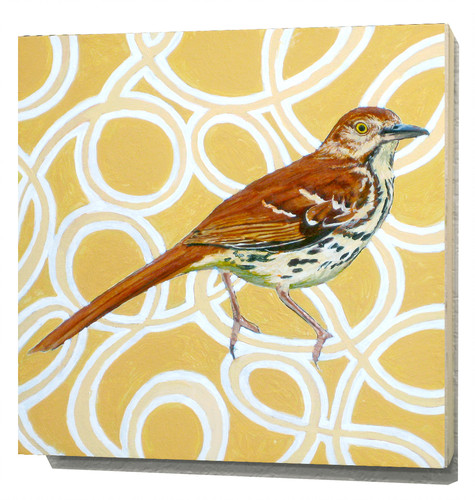 Clipart of georgia brown thrasher and tiger swallowtail butterefly image library library andrew-woodward | animals image library library