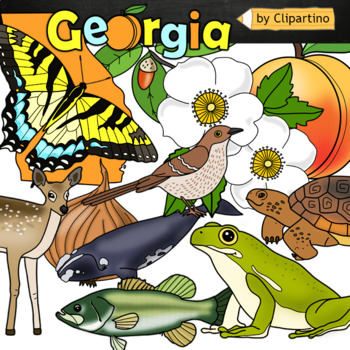 Clipart of georgia brown thrasher and tiger swallowtail butterefly clip art transparent Georgia state symbols clipart clip art transparent