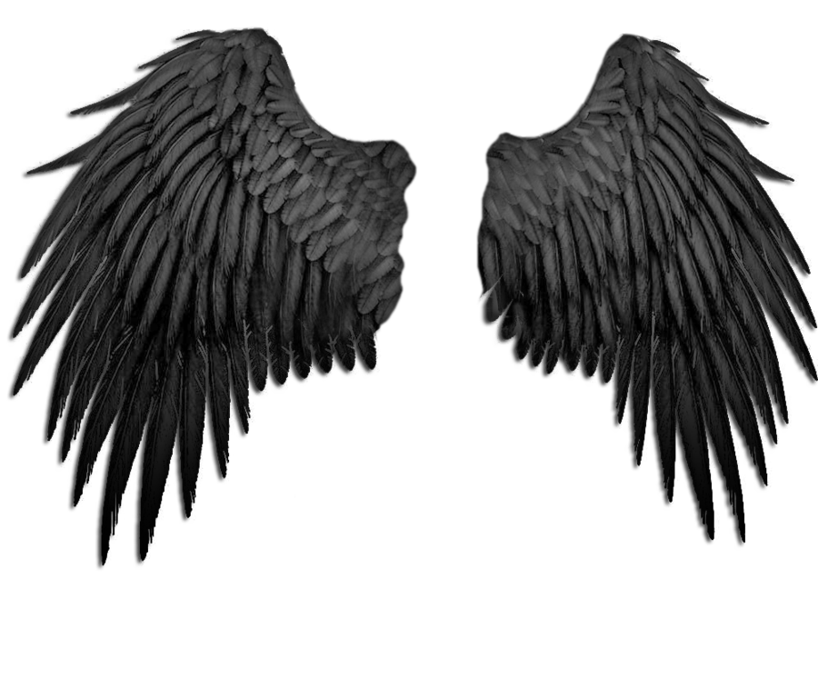 Clipart of german shepard with angel wings clip art transparent German Shepherd Stock DeviantArt Book - angel wings png download ... clip art transparent