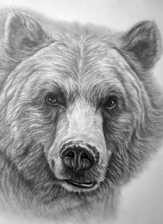 Clipart of grizzly bear with tattoos holding chainsaw jpg black and white stock 234 Best bear images in 2019 | Bear tattoos, Bear art, Frames jpg black and white stock