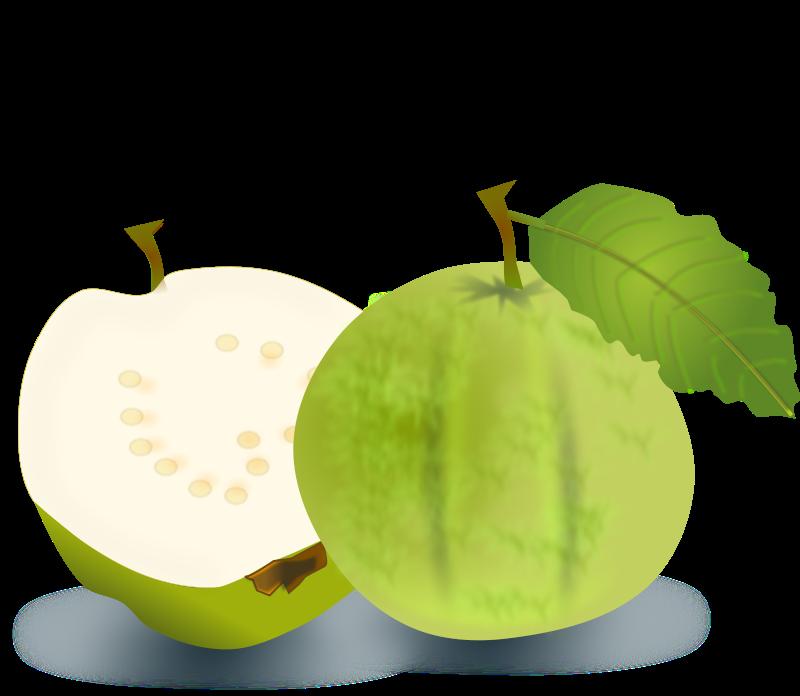 Guava images clipart image freeuse Free Clipart: Guava   netalloy image freeuse