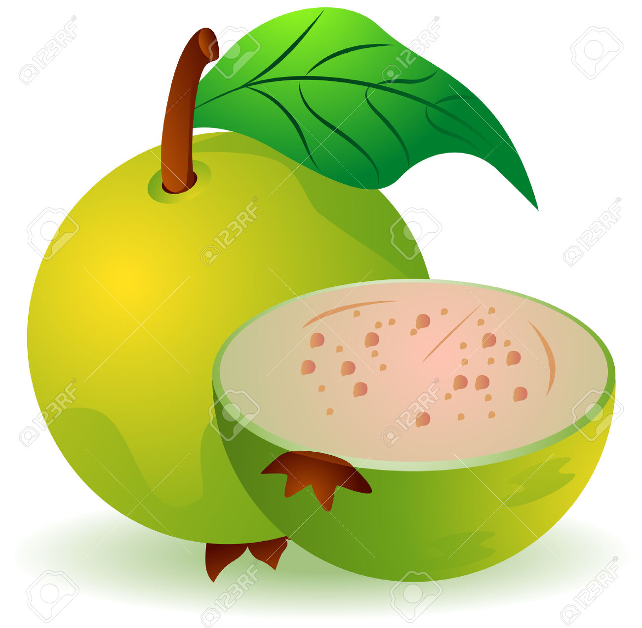 Guava images clipart vector royalty free download Clipart guava » Clipart Station vector royalty free download