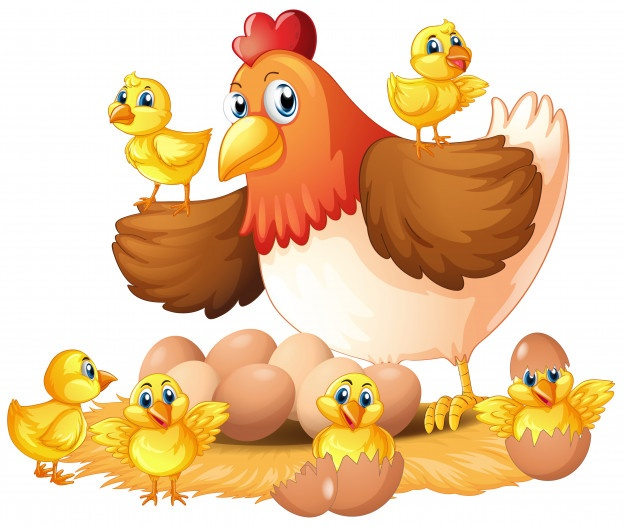 Clipart of mother hen protecting her chicks graphic black and white Hen Vectors, Photos and PSD files | Free Download graphic black and white