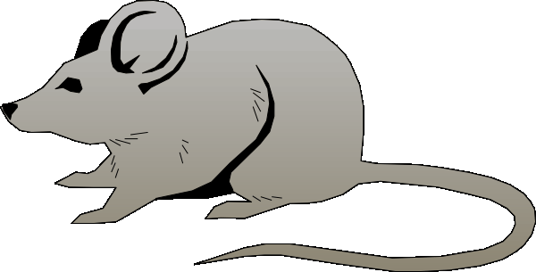 Mouse free clipart clipart royalty free Free mouse clipart kid - ClipartBarn clipart royalty free