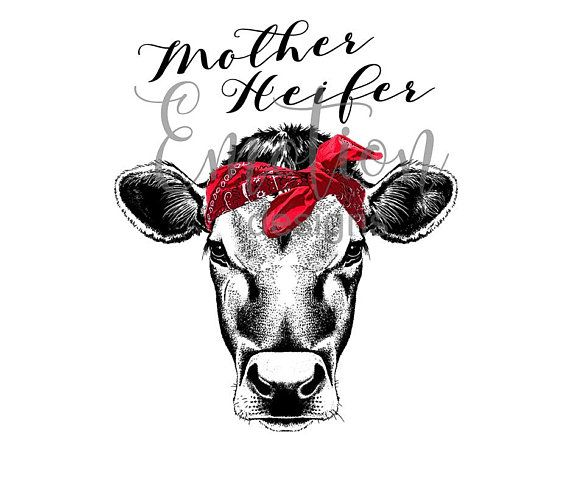 Library Of Banner Free Of Not Today Heifer With Cow Png
