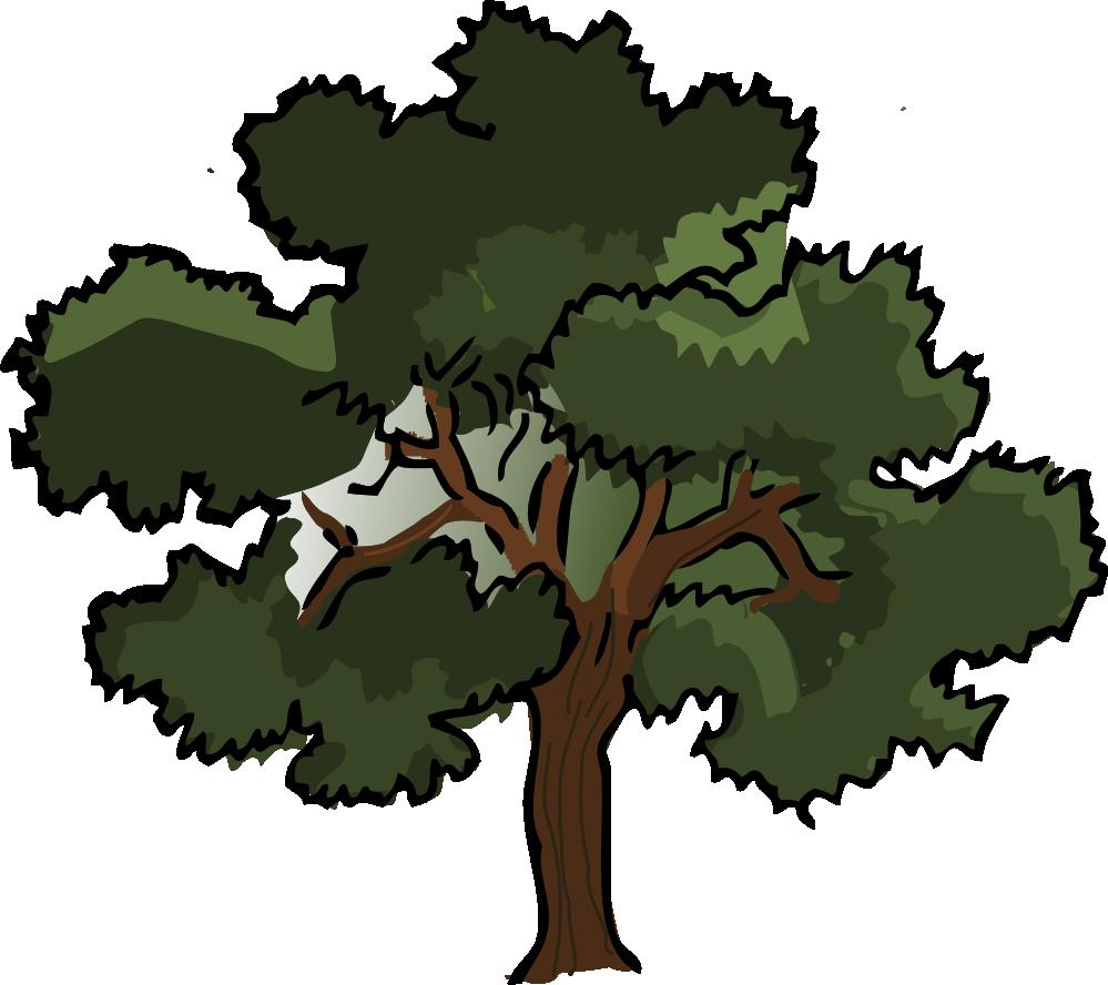 Clipart of oak tree clip art transparent library Oak Trees Clipart | Clipart Panda - Free Clipart Images clip art transparent library