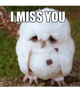 Clipart of owl saying i ll miss you banner free download 100+ Funny I miss you memes banner free download