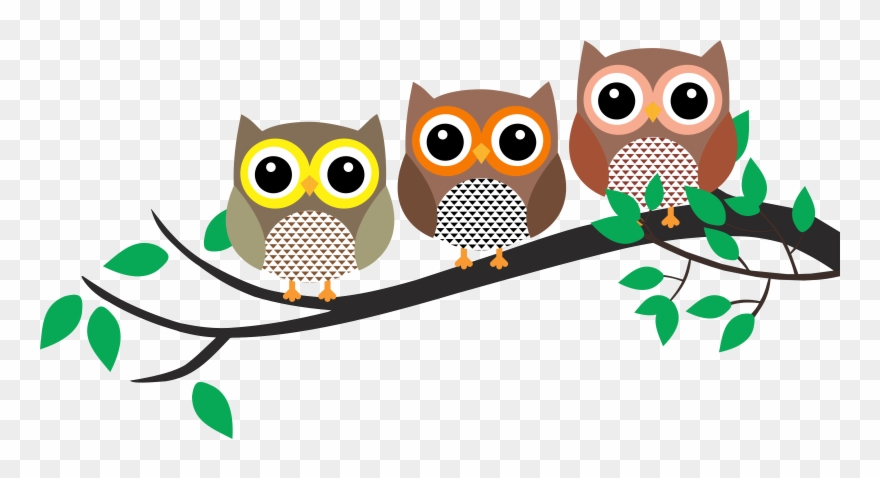 Owls on a branch clipart jpg freeuse stock Owl In A Tree Clipart - Png Download (#858647) - PinClipart jpg freeuse stock