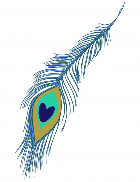 Clipart of peacock feather clipart download Peacock Feather Clipart Free Stock Photo - Public Domain Pictures clipart download